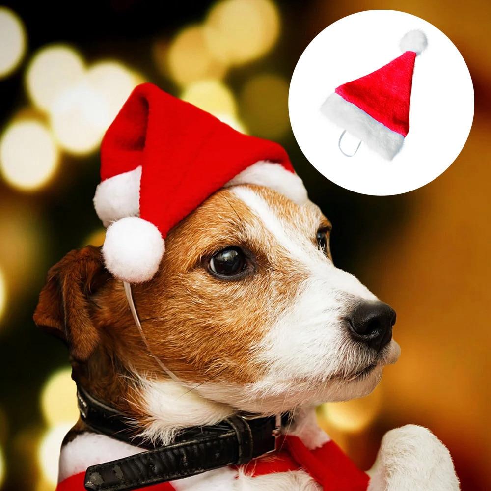 1 шт., Рождественская шляпа для животных, шапка Санта-Клауса, маленький щенок, кошка, собака, праздничный костюм, шляпа, загруженная с рождественским милым, высокое качество, Dropship