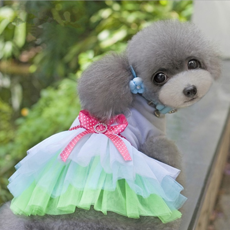 Cotton Lip Veil Princess Dress Clothes For Small Dogs Dresses Sweety Spring Summer Puppy Small Dog Lace Princess Dog Mascotas