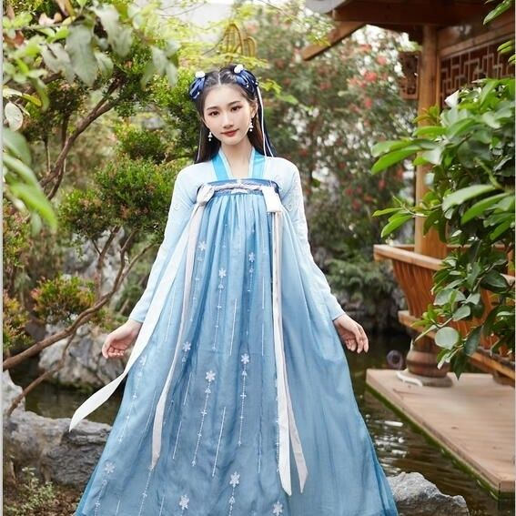Women Chinese Traditional Costume Female Hanfu Cosplay Clothing Lady Han Dynasty Princess Clothing Oriental Tang Dynasty Dress фото