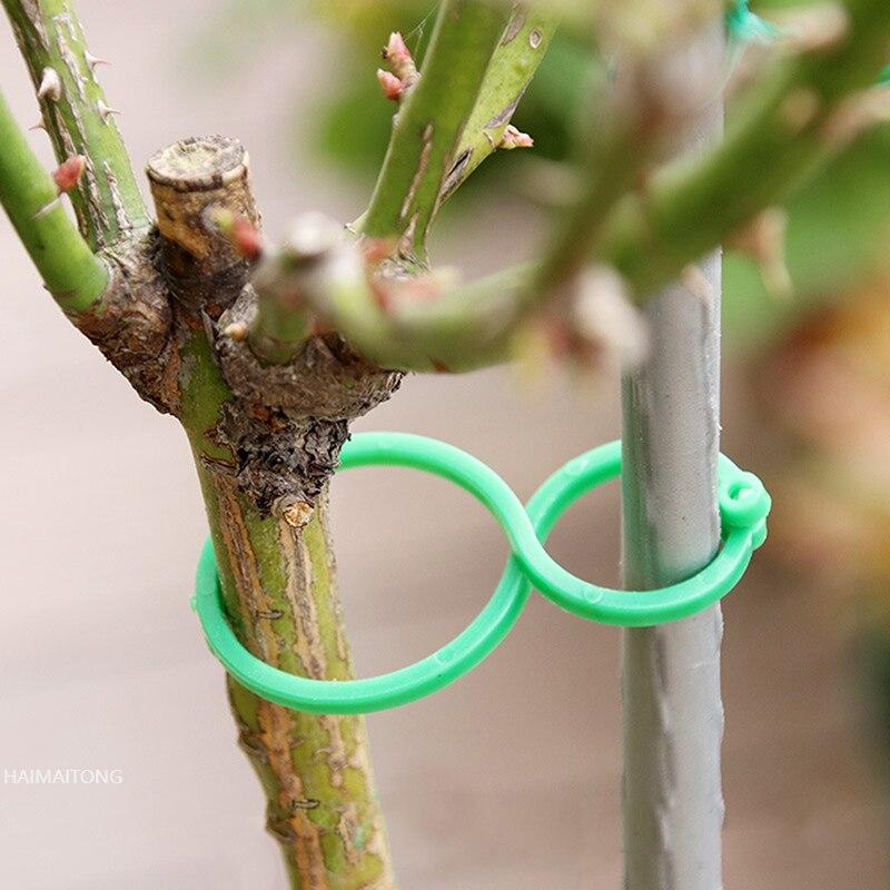 2021 50/100 шт. садовое Растение держатель из мешочного тика зажимы для виноградной лозы овощей НОВОЕ томатов, растущих в вертикальном положении...