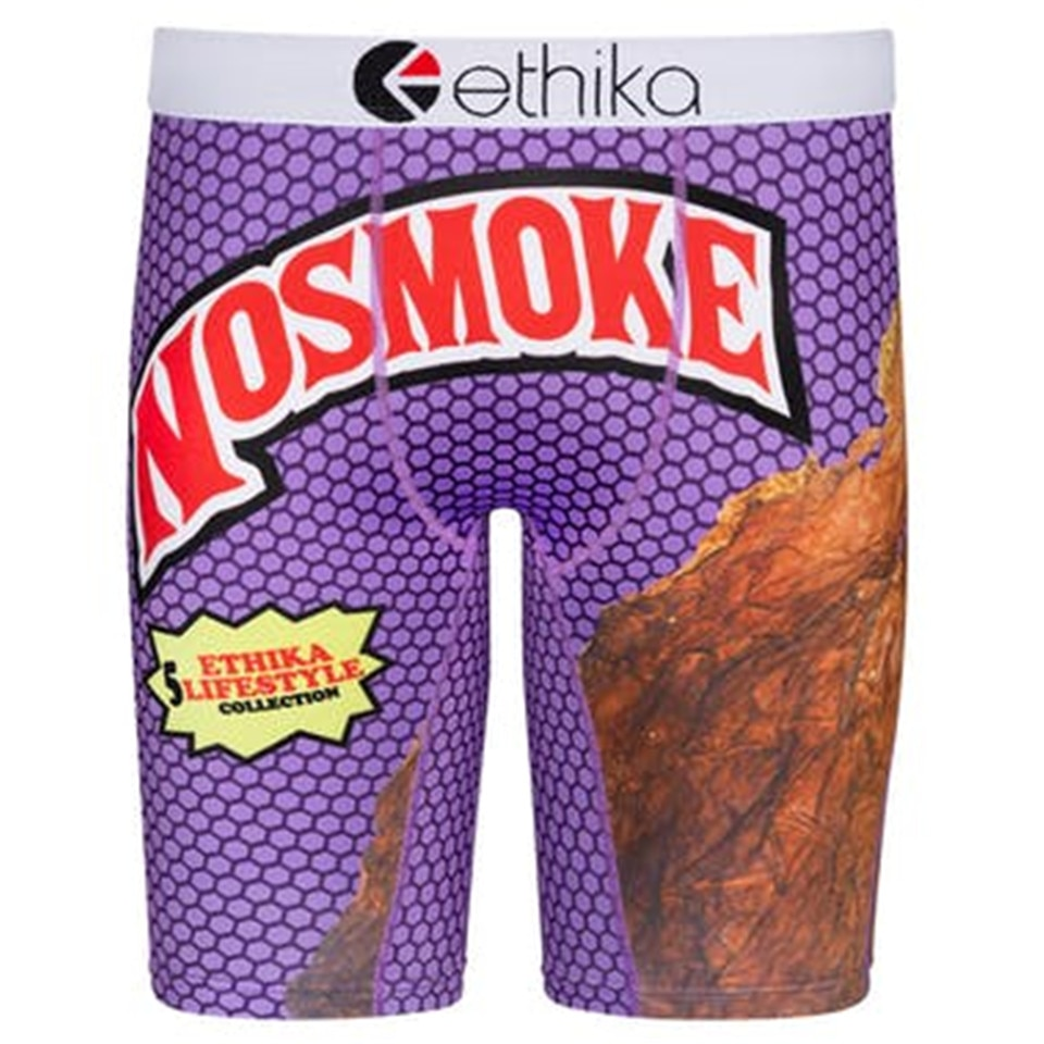 Ethika Mens Underwear Polyester Spandex Long Leg Boxers Brand Sexy U Pouch Underpants Man Breathable