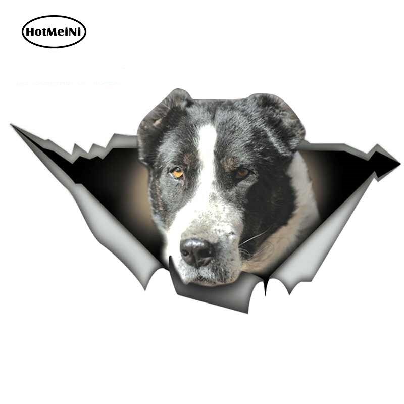 HotMeiNi-calcomanía de Metal rasgado para coche, pegatina reflectante, impermeable, para perro, color...