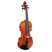 Ensemble de violon acoustique professionnel 4/4 violon pleine grandeur pour débutants avec étui rigide, épaulière, archet, colophane, Etc.
