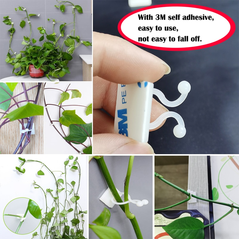 Plant climbing wall Self-Adhesive Fastener Tied fixture Vine Buckle Hook Garden plant wall climbing Vine Clips Fixed Buckle Hook