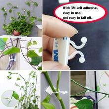 צמח טיפוס קיר דביק אטב קשור מתקן גפן אבזם וו גן צמח קיר טיפוס גפן קליפים קבוע אבזם וו