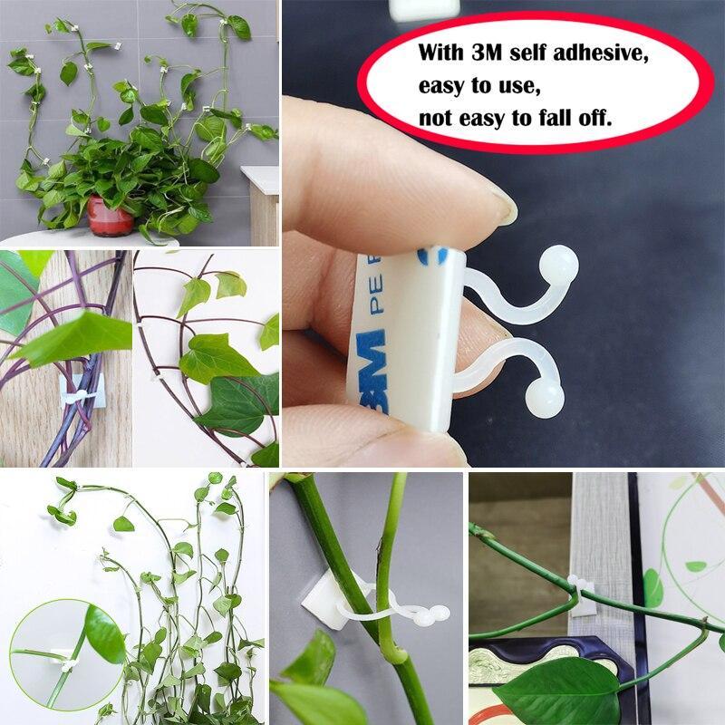 Plante escalade mur auto-adhésif attache attaché luminaire vigne boucle crochet jardin plante mur escalade vigne Clips fixe boucle crochet