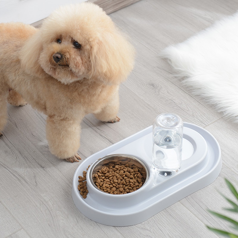 Non-Slip Dog Bowl 2 In 1 PP Stainless Steel Automatic Water Dispenser Feeder Pet Dog Cat Drinker Cute Pet Feeder Product Hot  - buy with discount