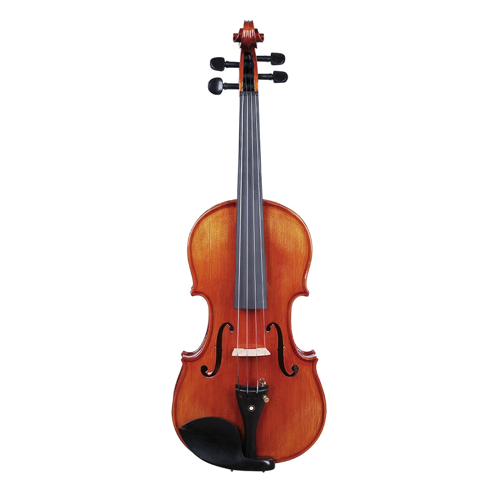 4/4 Violin High Quality Musical Instrument Spruce Wood Acoustic Fiddle With Case Bow Shoulder Rest Cloth Strings Accessory Set enlarge