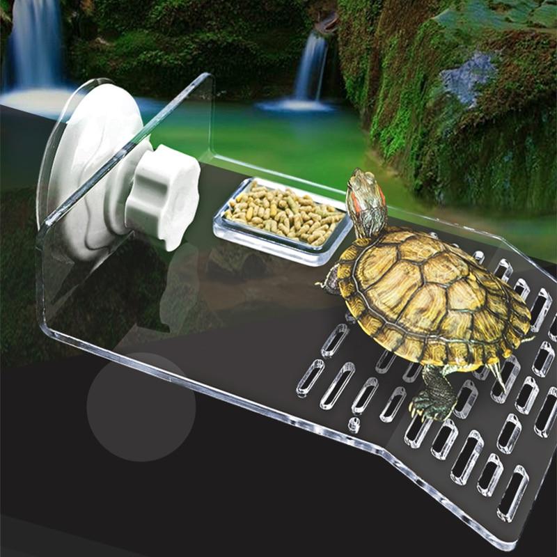 Acuario para Tortuga, plataforma para terraza, suministro de tortuga, muelle acrílico, mesa de secado solar, muelle de alimentación, base de decoración, oruga