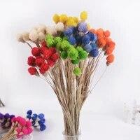 15 Pieces Fleur Sechee Naturelle Strawberrie Dherbe Bouquets De Fleurs Colorees A La Main Decor A La Maison ARTISANAT BRICOLAGE Fleurs