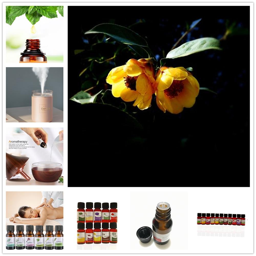 Óleos essenciais do óleo solúvel em água para o óleo do umidificador do óleo de rosa do algodão da aromaterapia com 12 tipos da fragrância hibiscus mutabilis