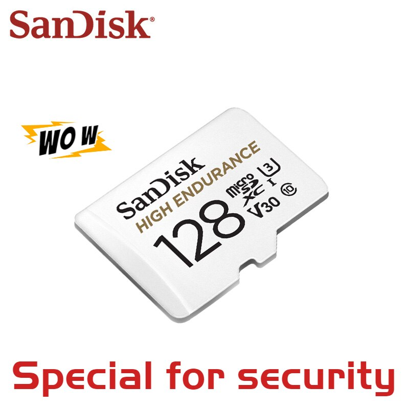 SanDisk Memory Card High Endurance Video Monitoring TF Card 256GB 128GB 64GB 32GB Micro SD Card Up to 100MB/s Flash Card