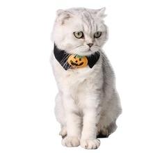 Produits dhalloween pour animaux domestiques collier de vacances   Trouble chien, accessoires chat, nœud papillon citrouille noir