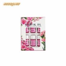 Mini aceite esencial para difusor de Aroma, humidificador de aire, lavanda, limón, Clavel, océano, rosa, jazmín, 3ML x 6 uds.