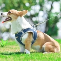 new dog hand holding rope vest reflective breathable pet supplies wholesale harness and leash set