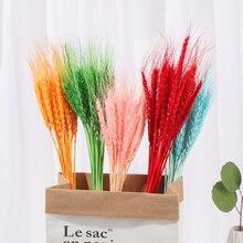 Fleurs naturelles séchées en vrai blé, 25 pièces, Bouquet de blé, pour décoration de mariage, pour scrapbooking, pour décoration de maison, DIY bricolage