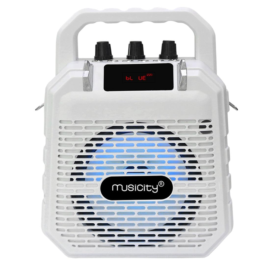 Altavoz Bluetooth portátil para niños altavoz inalámbrico Mini Karaoke máquina de juguete instrumento Musical blanco