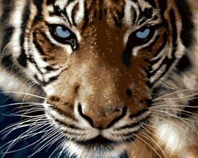 Drawjoy tigre quadro de pintura por números casa decoração pintura & caligrafia diy pintura a óleo da lona arte da parede presente único