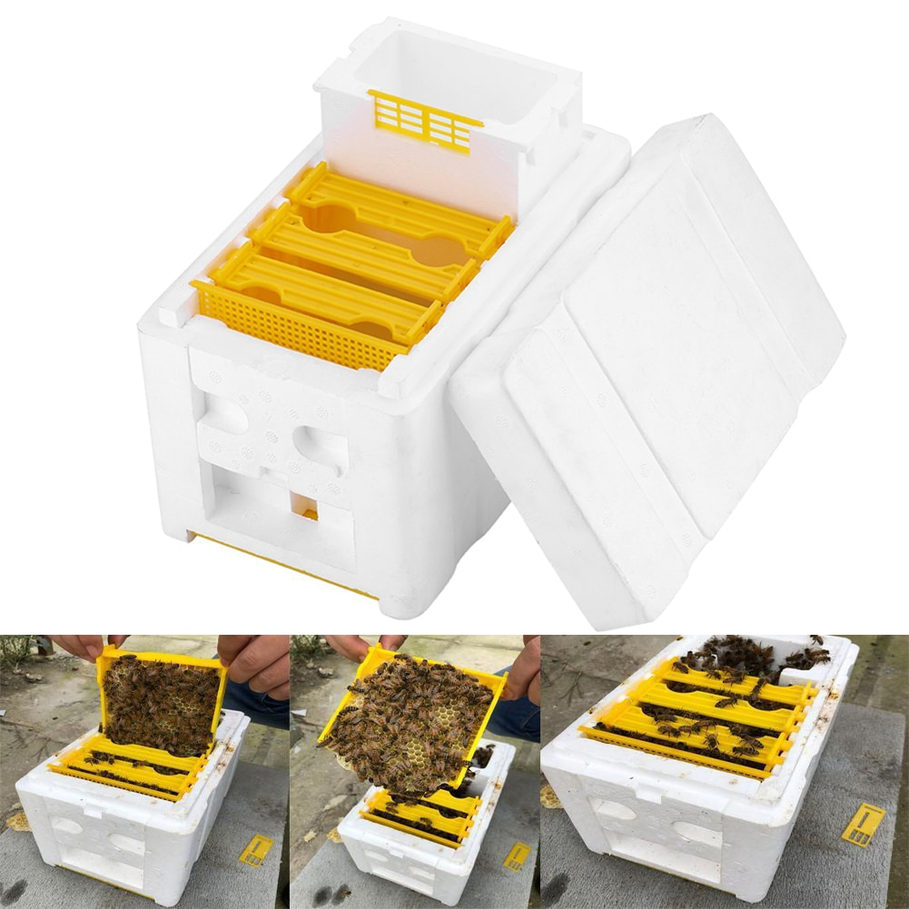 Harvest Bee Hive Beekeeping King Box Pollination Box Beekeeping Tool Perfect for Garden Pollination 30FP13