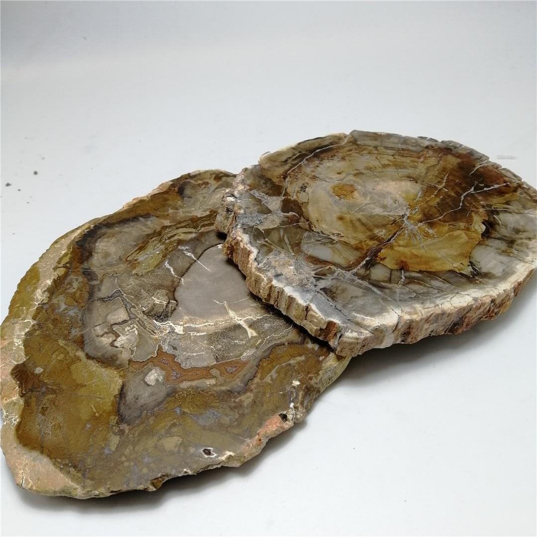 1 pc de madera natural fósiles Piedra natural espécimen de cristal de cuarzo rebanada Cristal de para la decoración o regalo