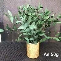 Lot deucalyptus a feuilles fines conservees en Nature reelle  guirlande de fleurs eternnell  decoration de maison  mariage  10   30CM 50g