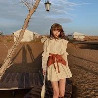 dress female 2021 autumn and winter korean style new french retro fashion high street design temperament shirt skirt