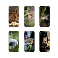 Transparante Tpu Cover Tas Muis Muizen Leuke Hd Wallpaper Voor Apple Iphone X Xr Xs 11Pro Max 4S 5S 5C Se 6S 7 8 Plus Ipod Touch 5 6