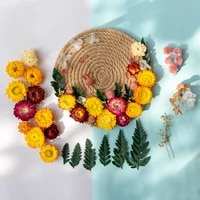 immortal dried flowers natural plants diy materials living room wall hanging decorations parent child manual activity creation