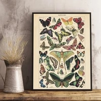 antique butterfly vintage poster prints insect kind nature education wall art canvas painting picture kids room home wall decor