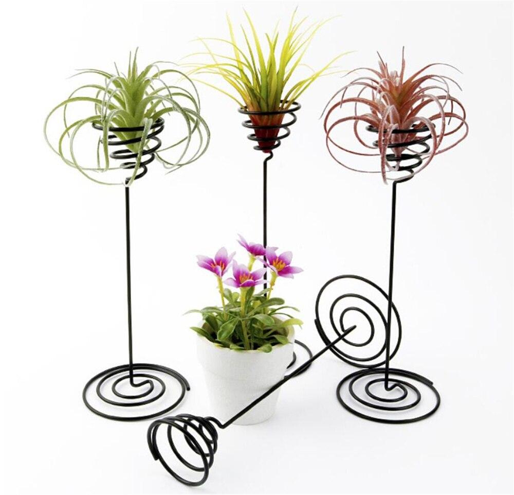 10 قطعة/الوحدة الهواء النبات حامل حامل أسود الحديد دوامة زهرة airfactory الحاويات حامل Tillandsia لعرض النبات