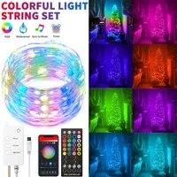 Guirlande LED de noel Light     lumiere feerique RGB  telecommande USB WIFI Bluetooth pour Alexa   Google Home  decoration de maison de noel