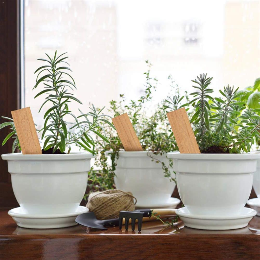 Купить с кэшбэком 50pcs Bamboo Plant Labels Eco-Friendly Wooden Plant Sign Tags Garden Markers For Seed Potted Herbs Flowers Tools