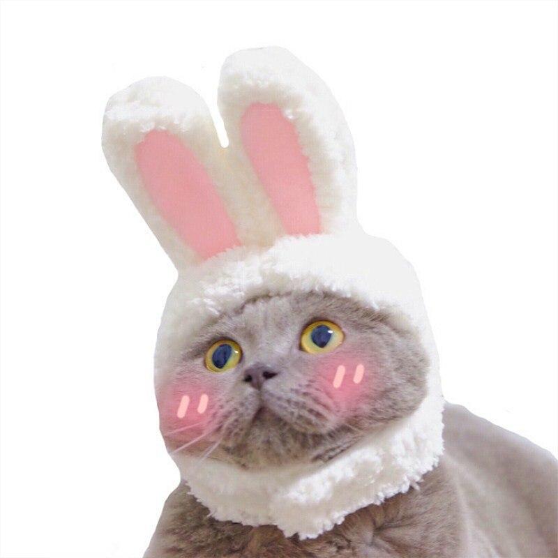 Забавная Новинка 2021 Кепка для домашних животных собака кошка костюм теплая шапка кролик новогодвечерние аксессуары для косплея фото рекви...