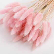 20Pcs/lot Natural Dried Flowers Real Rabbit Tail Grass Artificial Flower Bouquet Pink Romantic Wedding Flowers Home Decoration