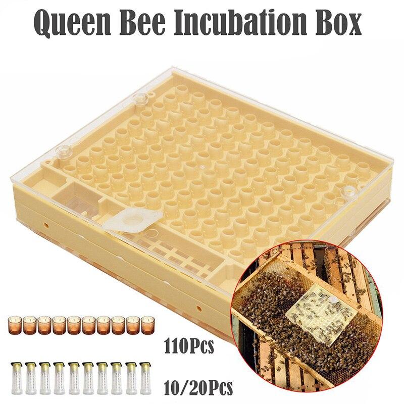 Bienenzucht Werkzeuge Set Aufzucht System Kultivierung Box 110 stücke Kunststoff Tassen Bee Nicot Komplette Catcher Käfig Bienenzucht Werkzeuge