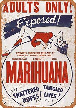 8 x 12 inches Metal Vintage Funny Tin Sign 1936 Marijuana Exposed