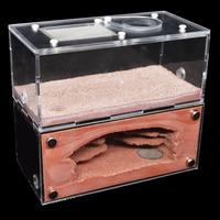 High Quality Concrete Ecological Ant Farm Ant House with Feeding Area Pet Anthill Workshop Castle Sand Nest Sandcastle 16*7*14CM