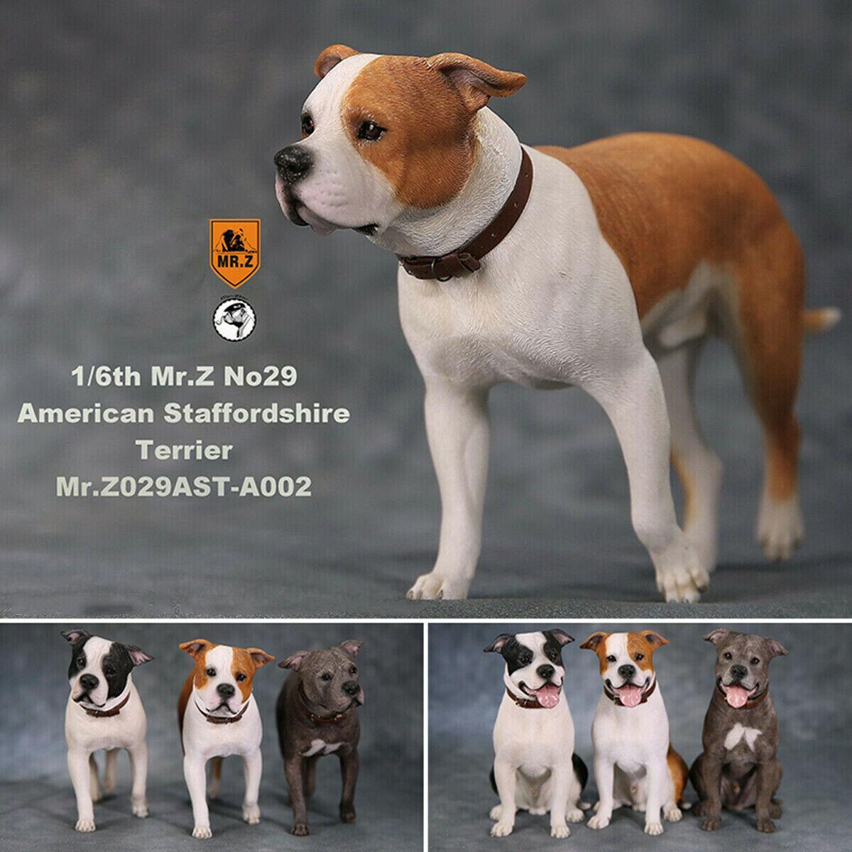 Figuras de acción de D. Z, colección de mascotas de los American Staffordshire Terrier 1/6, decoración para animales, modelo regalo para soldado de 1/6