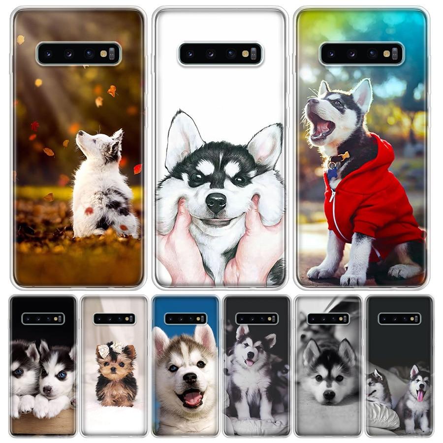 Funda de teléfono de Animal Husky para Samsung Galaxy A90, A71, A70, A51, A50, A10, A11, A41, A30, A40, M30S, A01, A6, A7, A8, A9 Plus