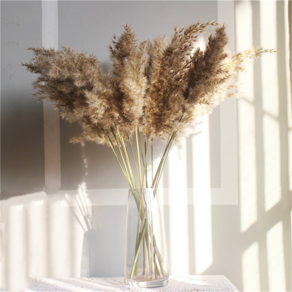 Free Shipping Dried Pampas Grass Decor Wedding Flower Bunch Natural Plants for Home Christmas Decorations 2021