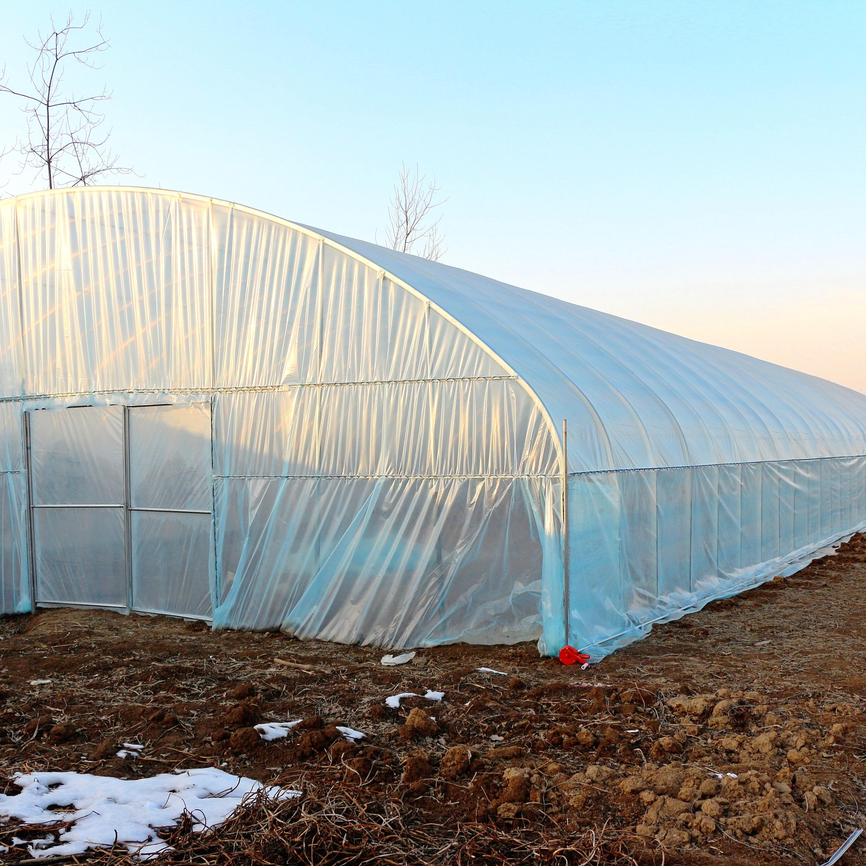 Greenhouse vegetable planting cucumber tomato greenhouse sunshine house greenhouse greenhouse bracket
