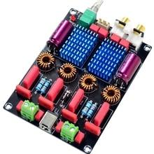 Tpa3116 2.0 carte amplificateur de puissance numérique haut de gamme Wima double puce (100W + 100W)
