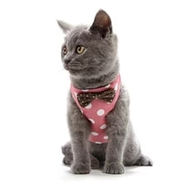 pet cat special traction rope cat vest style chest harness traction set japanese anti earning cat rope comfortable breathable