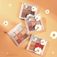 fashion daisy transparent 4 colors eyeshadow palette eye makeup 9 shades shimmer