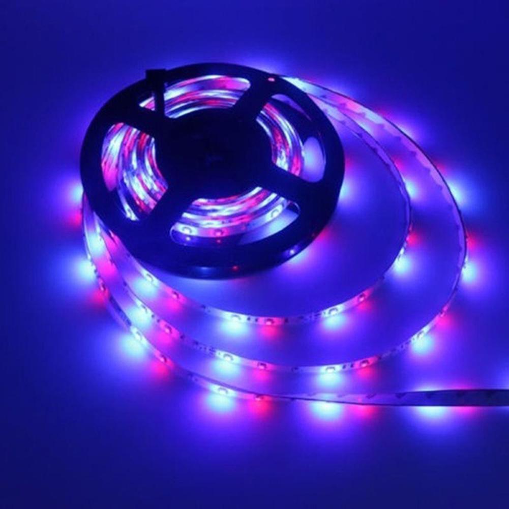 5m led luz de tira de controle remoto infravermelho 3528smd rgb flexível luz de tira com forte adesão para iluminação de decoração interior