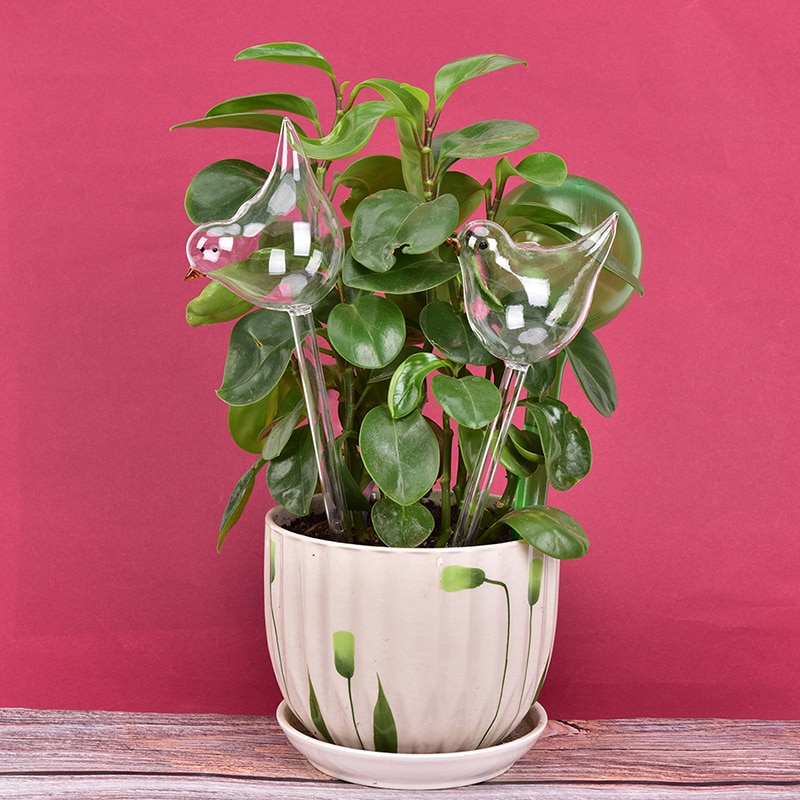 1pc planta auto rega globo plantas lâmpadas de água forma pássaro dispositivo de rega de vidro transparente