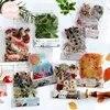 Mr. Papier – autocollants plante fleur champignon Ginkgo papeterie décorative en Pet pour journal intime Scrapbooking planificateur 40 pièces/sac