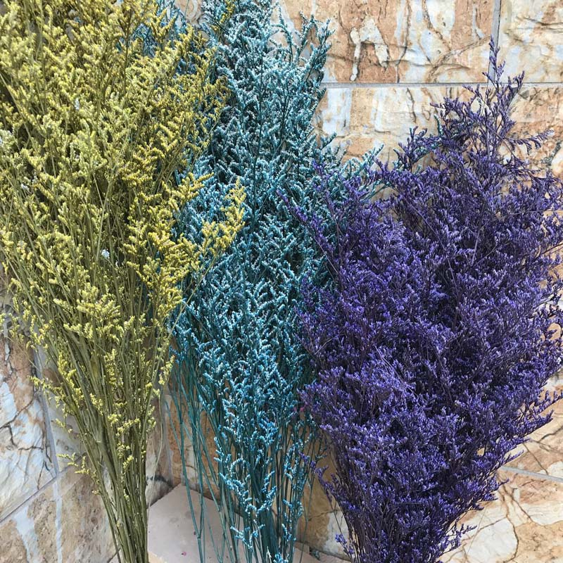 30g/pacote, 15-35 cm amante grama natural fresco flores de dança preservadas secas, ramo real da grama da flor para sempre para a decoração da casa