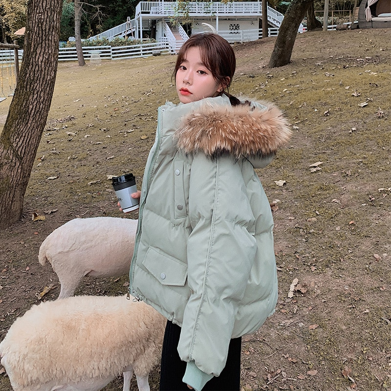 Real Shot معطف مبطّن بالقطن 2021 سترة نسائية ثقيلة جديدة قصيرة على الطراز الكوري طالب فضفاض الإنترنت Hot Ins هونغ كونغ