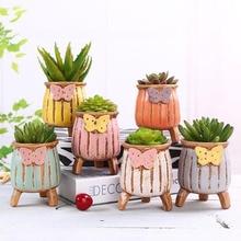 Un ensemble Succulent plante Pot Vase créatif planteur bureau décorations de bureau en céramique Pot de fleurs charnu porte-plante maison jardin décor